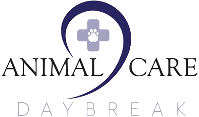 Animal Care Daybreak